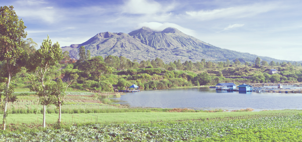 Bali Island- Indonesia