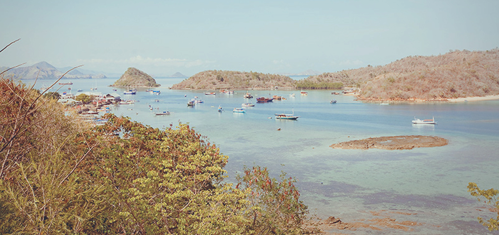 Labuan Bajo, Pulau Komodo