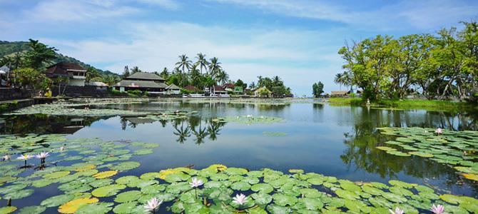 Lotus Lagoon, spot foto favorit di Candidasa
