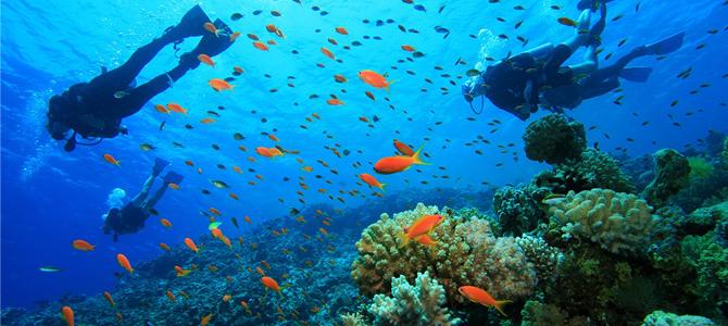 Snorkeling di Kanawa