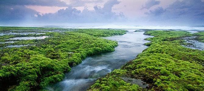 Pulau Santolo, Cilauteureun