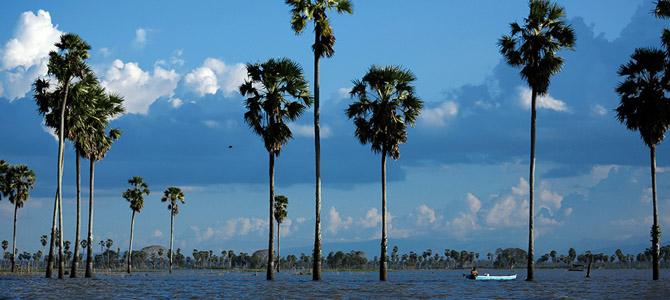 Danau Tempe (Image: Flickr)