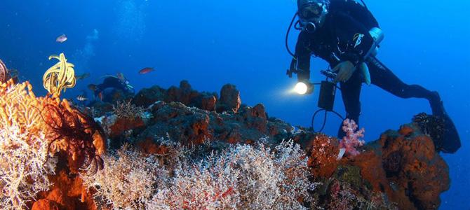 Diving di Kanawa