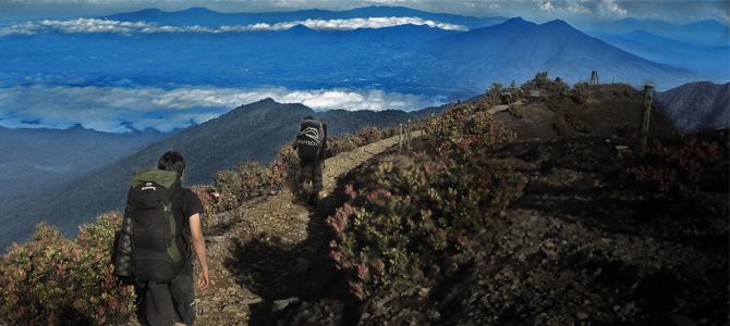 Trekking Gunung Gede