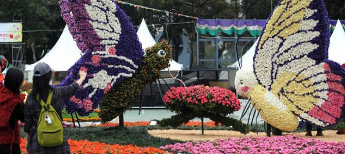 tomohon flower festival 1x