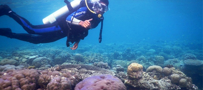 sombori diving