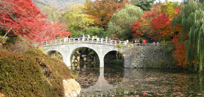 Jembatan di Bulguksa, musim gugur (IMG: Christopher Anderson)