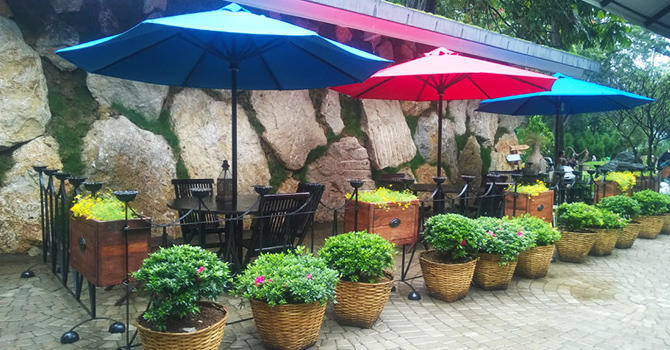 Rumah Hobbit Dan 5 Hal Menarik Di Farmhouse Susu Lembang