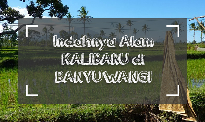 Cover Kalibaru