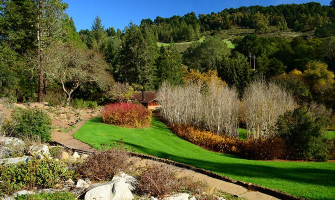 Regional Parks Botanic Garden di Tilden Park (IMG: nativeplants)