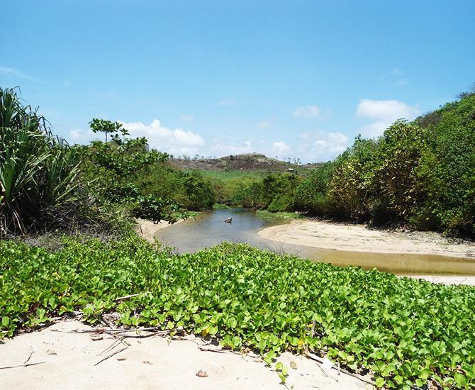 Jalan belukar menuju pantai (IMG: bisototo)