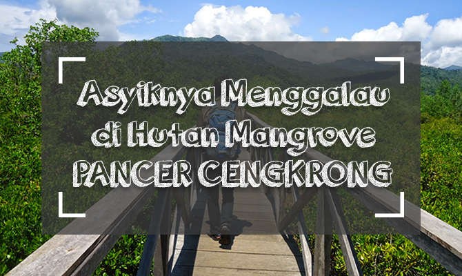 PANCER CENGKRONG cover