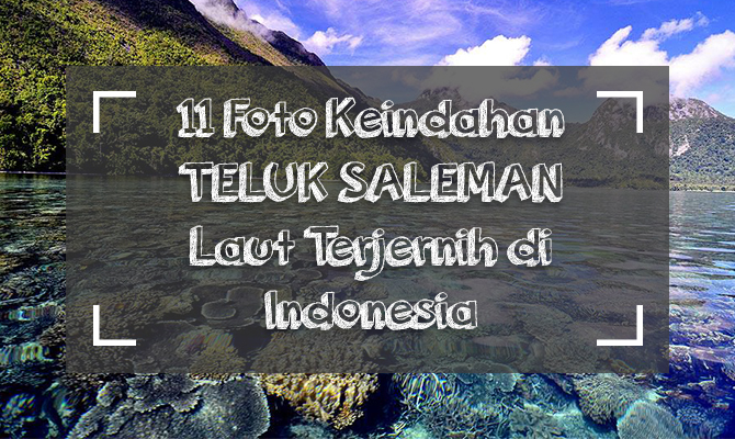 cover teluk saleman