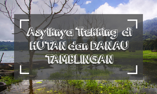 Buyan and Tamblingan Jungle Trekking